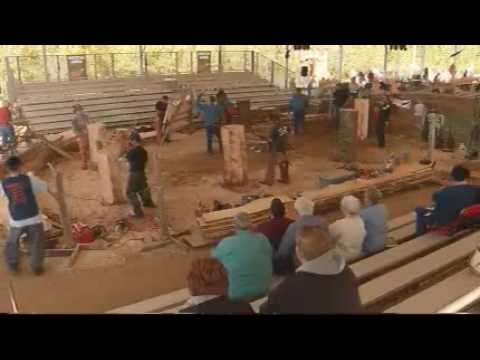 Chainsaw Carving - Hackensack, MN