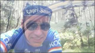 Koga Miyata Capri-Sonne Team Roadbike 1981