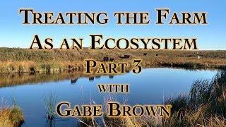 Gabe Brown Ecosystem Restoration Farming pt 3