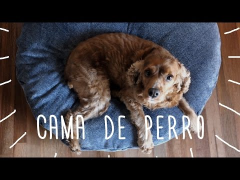 DIY - Cama para perro - Tutorial