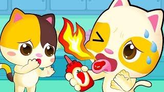 Mèo con Timi ăn vụng | Cẩn thận cay đó! | Nhạc thiếu nhi vui nhộn | BabyBus