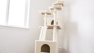 Setting Up Our New Frisco 72 Cat Tree!