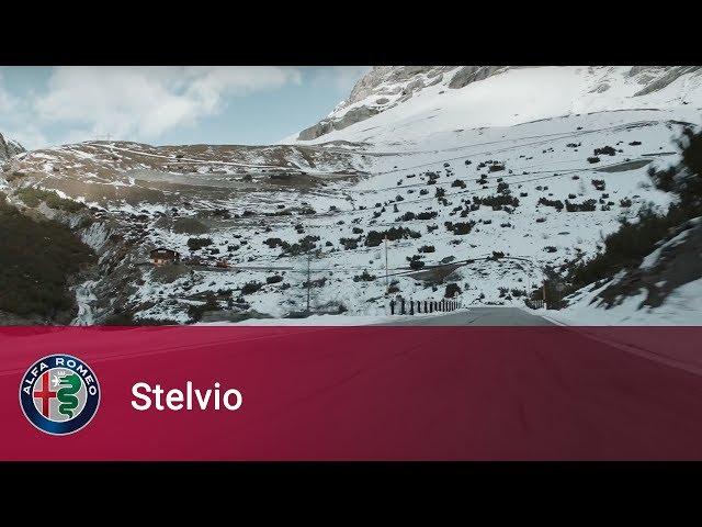 Alfa Romeo Stelvio - You were created to excite me