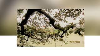 Trần Thị Hiền Lành - Hạnh Phúc Trôi Xa--Ngọc Lan