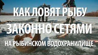 Промышленный ловля рыбы