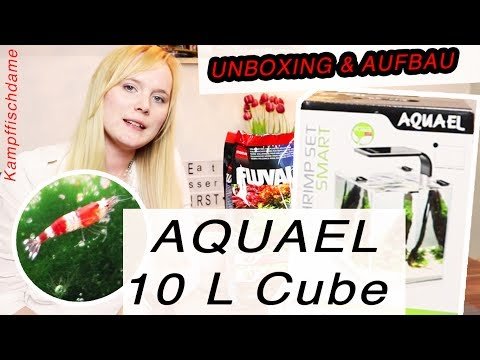AQUAEL 10 L Cube // für Garnelen oder Fische geeignet? // Vergleich Nano Cube ! // Kampffischdame