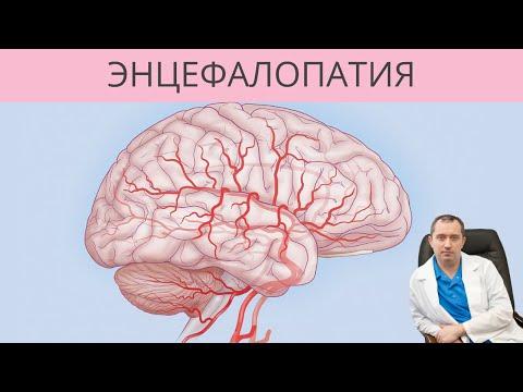 Энцефалопатия. От чего с возрастом развивается энцефалопатия?