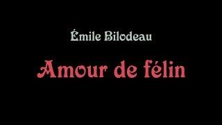 Émile Bilodeau   Amour De Félin ( Paroles )