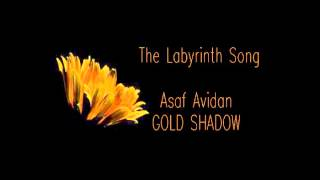 Asaf Avidan | The Labyrinth Song | GOLD SHADOW