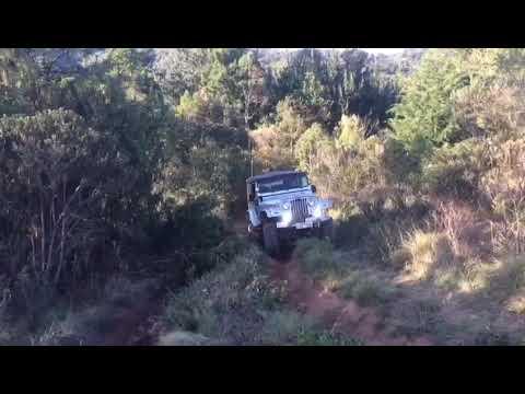Jeep clandestino na trilha alto Boa Vista