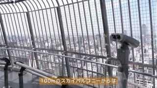 名古屋テレビ塔周辺