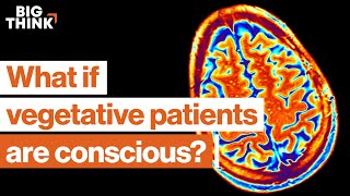 1 in 5 vegetative patients is conscious. This neuroscientist finds them. | Big Think x Freethink