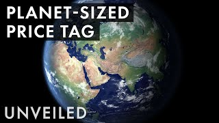 What Is Earth Worth?  | Unveiled