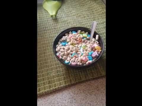 That cereal  bomb 💣