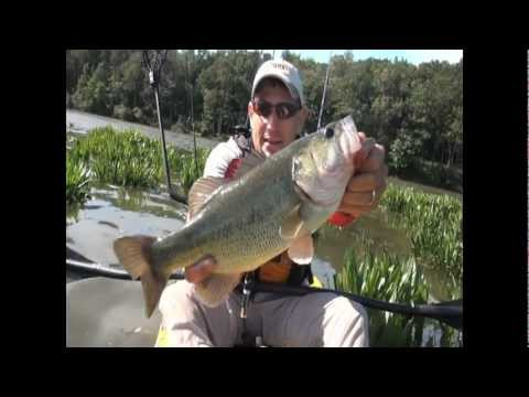 Lure Choice for Muddy Water Bass Fishing