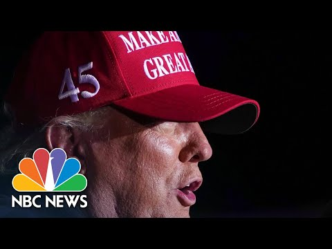 Judges Shut Down Trump's Claims Of Election Irregularities In Court | NBC News NOW