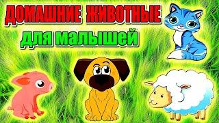 Домашние животные для самых маленьких. Как говорят животные. Развивающее видео для детей.