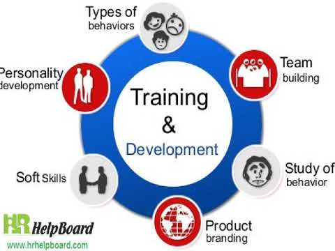 Training & Development of Employees in Human Resources ...