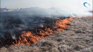 В районе посёлка Григорово случилось серьёзное возгорание травы