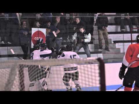 Ice Hockey Slovakia 2011 Nintendo DS