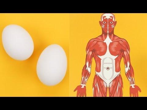 Wie es richtig ist, auf kardiotrenascherach abzumagern
