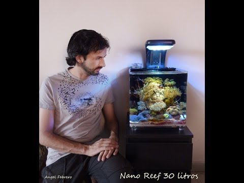 Nano reef 30 L
