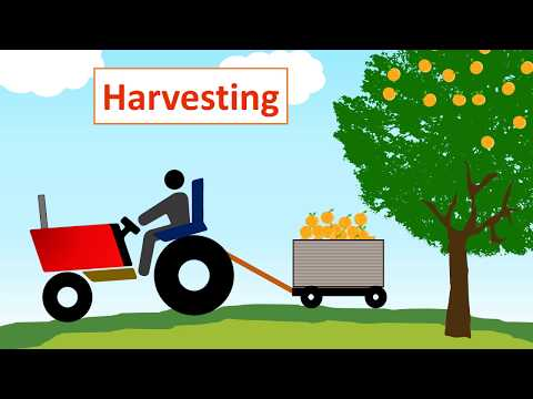 #HACCP Training with example Part 1️⃣ (Orange Juice ) in very ...