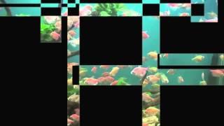 Lambert Windges - How The Light Falls (Traum CDDig 37)