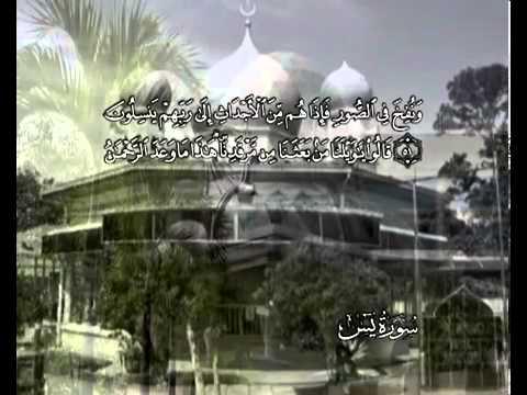 सुरा सूरत् यासीन<br>(सूरत् यासीन) - शेख़ / महमूद अल-बन्ना -