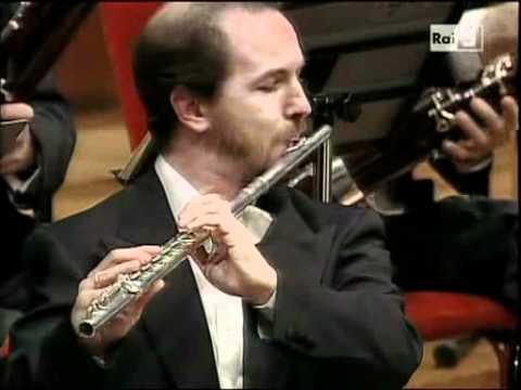 Variazioni in Si bemolle maggiore su un tema di Haydn op. 56a - Brahms - Video 2 di 2