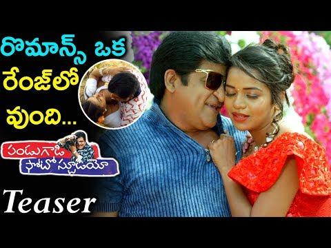 Ali Pandugadi Photo Studio Movie Official Teaser   2019 Telugu Movie News Updates   Silver Screen