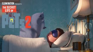 The Secret Life Of Pets 2   It's Gonna Be a Lovely Day (Lyric Video)   Illumination