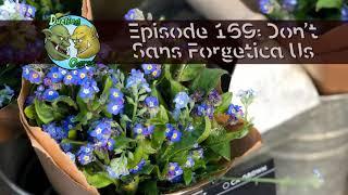 Episode 169: Don't Sans Forgetica Us