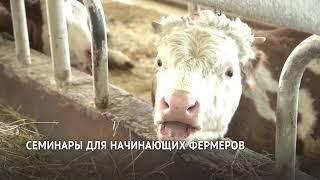 Грантовую поддержку помогают получить начинающим фермерам в Хабаровском крае