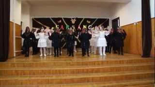 preview picture of video 'szikszó farsang 2013 4.b hattyúk és hollók'