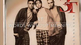 3T - Words Without Meaning