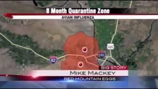 Avian influenza quarantine ordered
