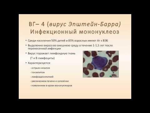 Лямблии при гепатите