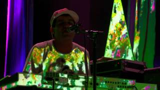 Animal Collective - Today's Supernatural (Live @ Prospect Park Brooklyn 2011)
