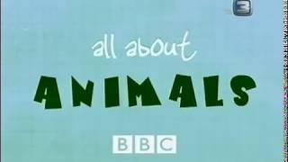 Гиеновые собаки. Всё о животных.