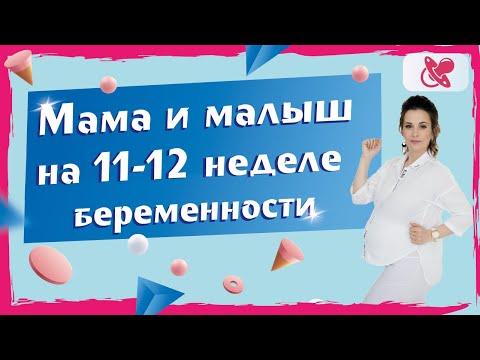11-12 неделя беременности. Что от нее ждать?