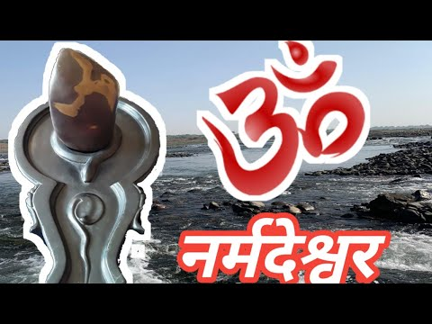 Swayambhu Narmada Shiva Lingam