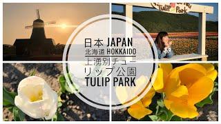preview picture of video 'Vlog #3 - 日本 北海道 Hokkaido: 上湧別チューリップ公園 - Hokkaido Kamiyubetsu Tulip Park'