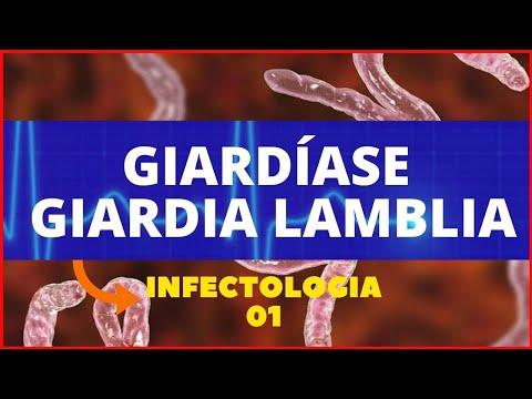 A paraziták megelőző kezelése népi gyógyszerekkel