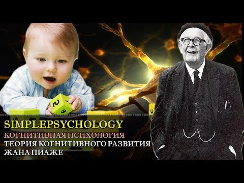 Когнитивная психология мышления #81. Теория когнитивного развития Жана Пиаже.
