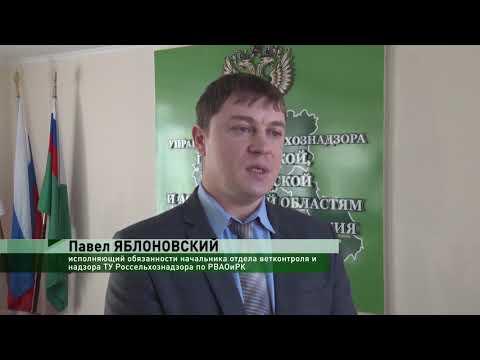 Управлением Россельхознадзора в Ростовской области проведена проверка птицеводческого хозяйства