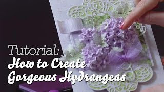 EZ Tips to Create Stunning Hydrangeas