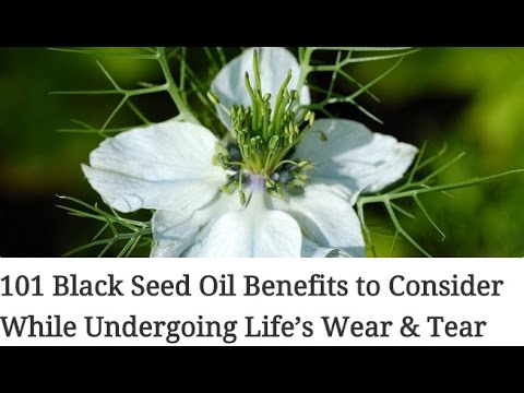 Video 101 Black Seed Oil Benefits to Consider While Undergoing Life's Wear & Tear