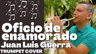 """Final de """" Oficio de enamorado """" de Juan Luis Guerra ( trompeta / trumpet )"""