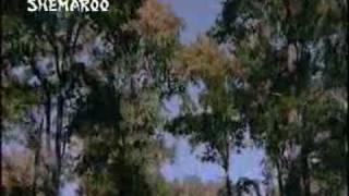 LEHRA KE DAGAR.avi - YouTube